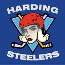 Harding Steelers